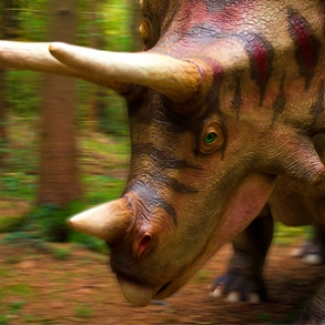 Triceratops - The best dinosaur theme park I